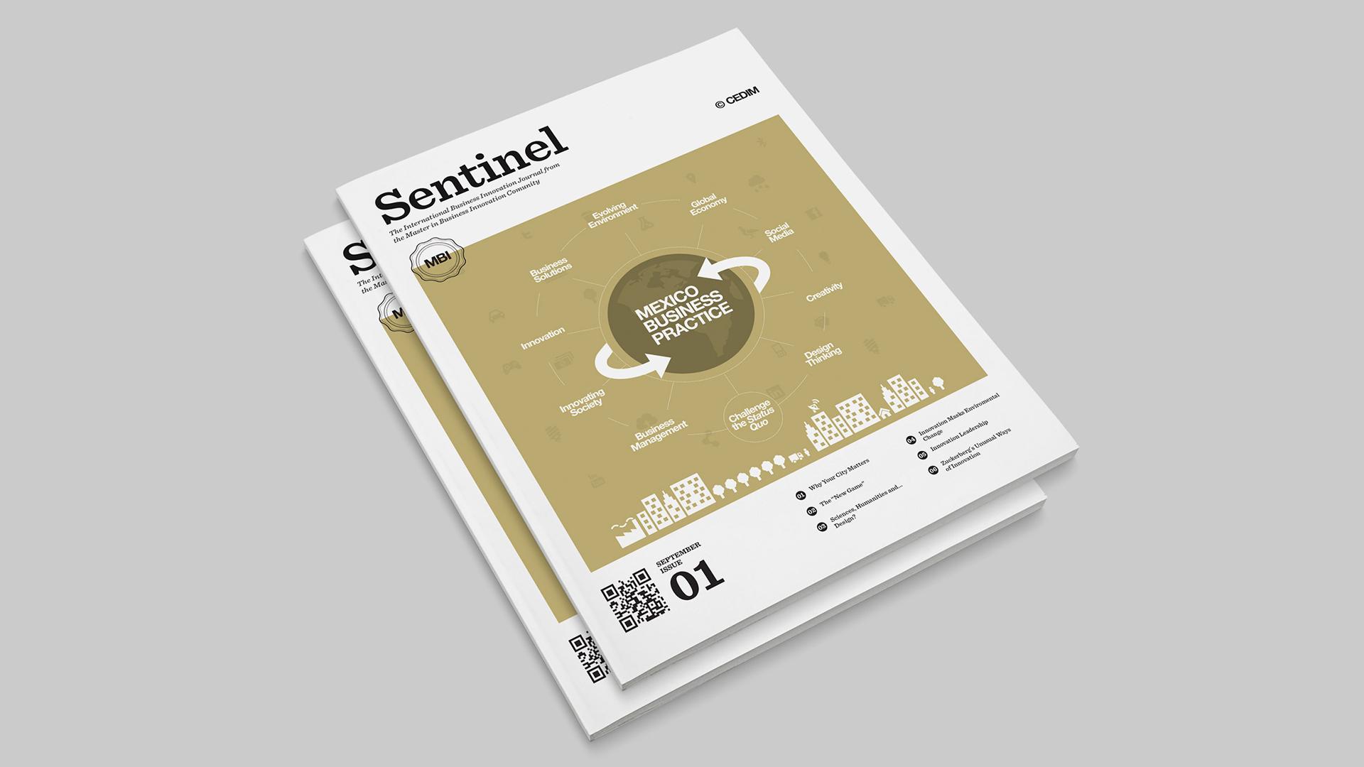 Baner_Sentinel