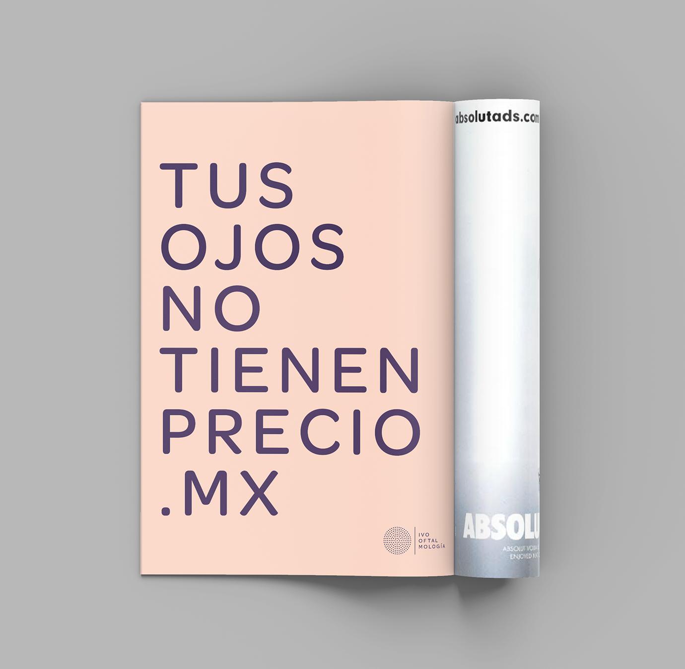 Revista-Ivo2