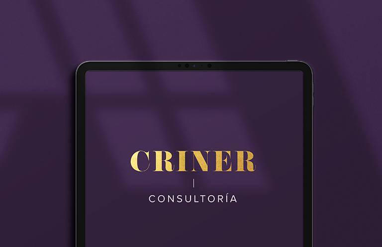 CRINER CONSULTORIA