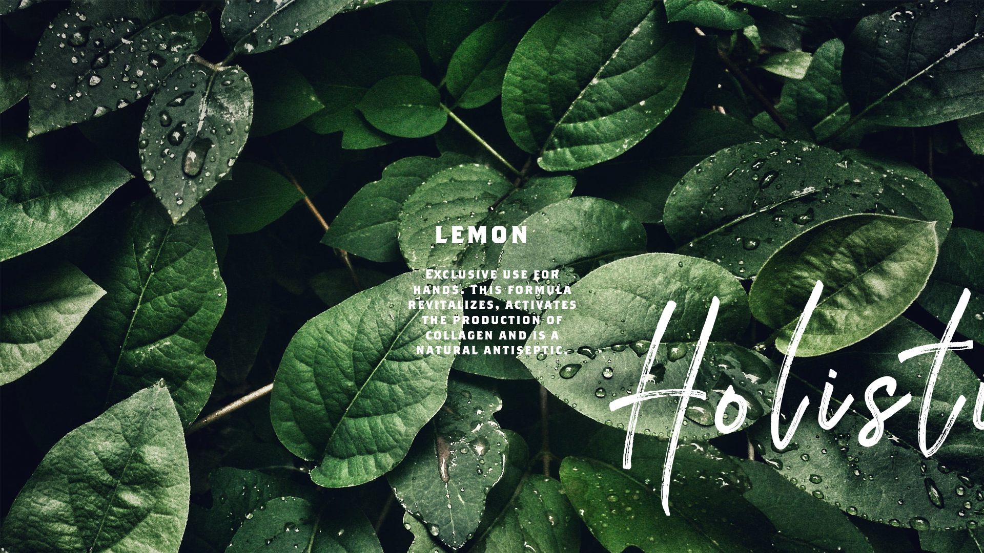 lemon-leaves-spa-packaging-yoenpaperland