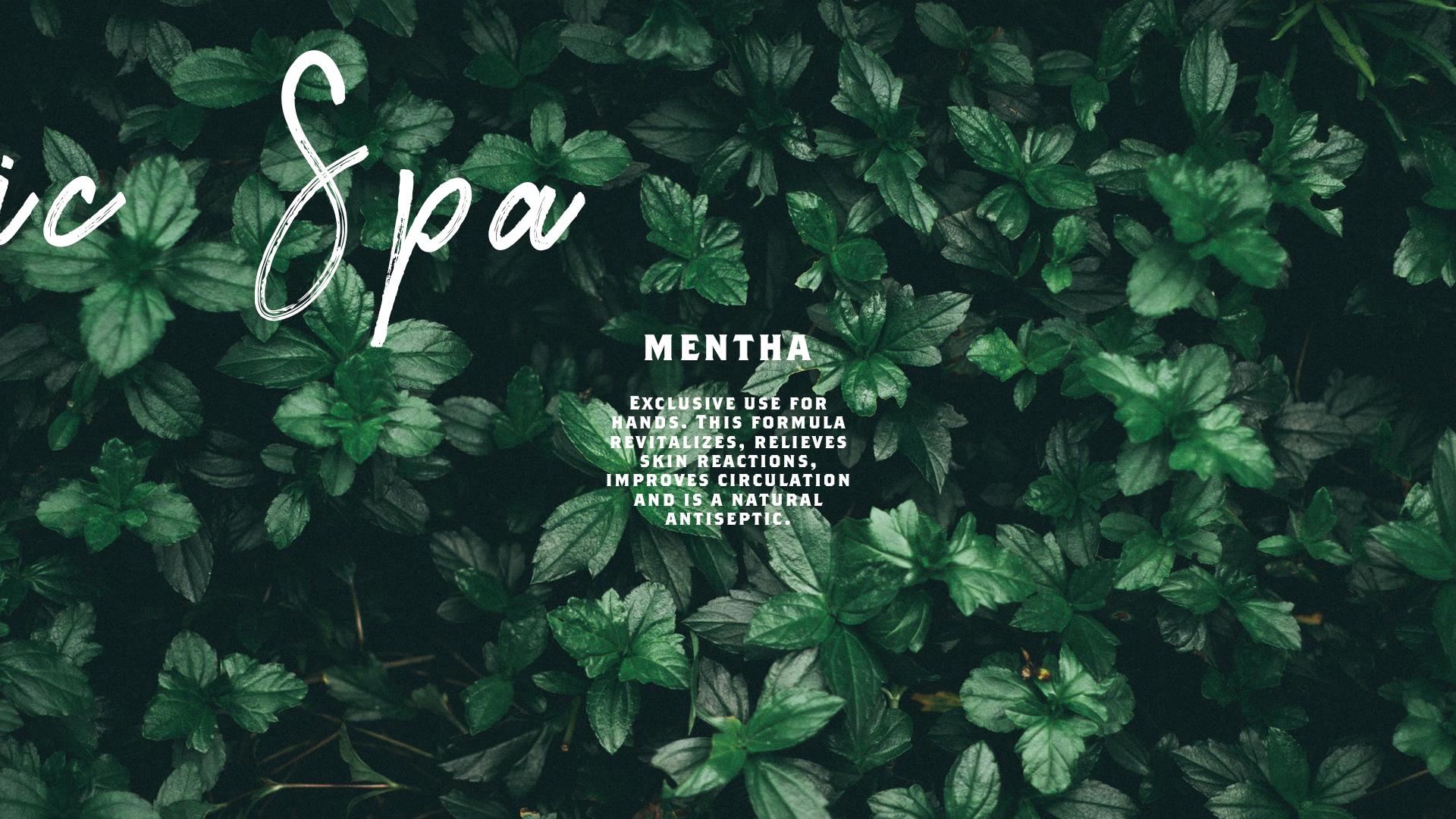 mentha-leaves-spa-packaging-yoenpaperland