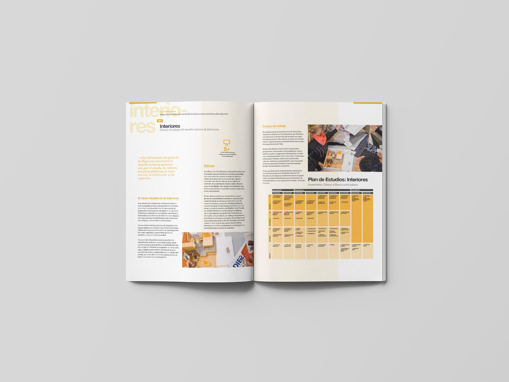 spread11-cedim-brochure-yoenpaperland