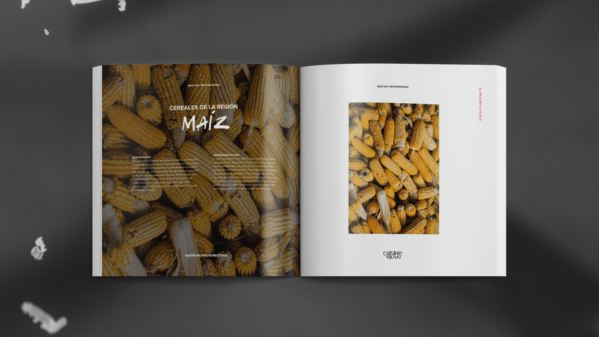 spread26-regia-cuisine-yoenpaperland-compressor