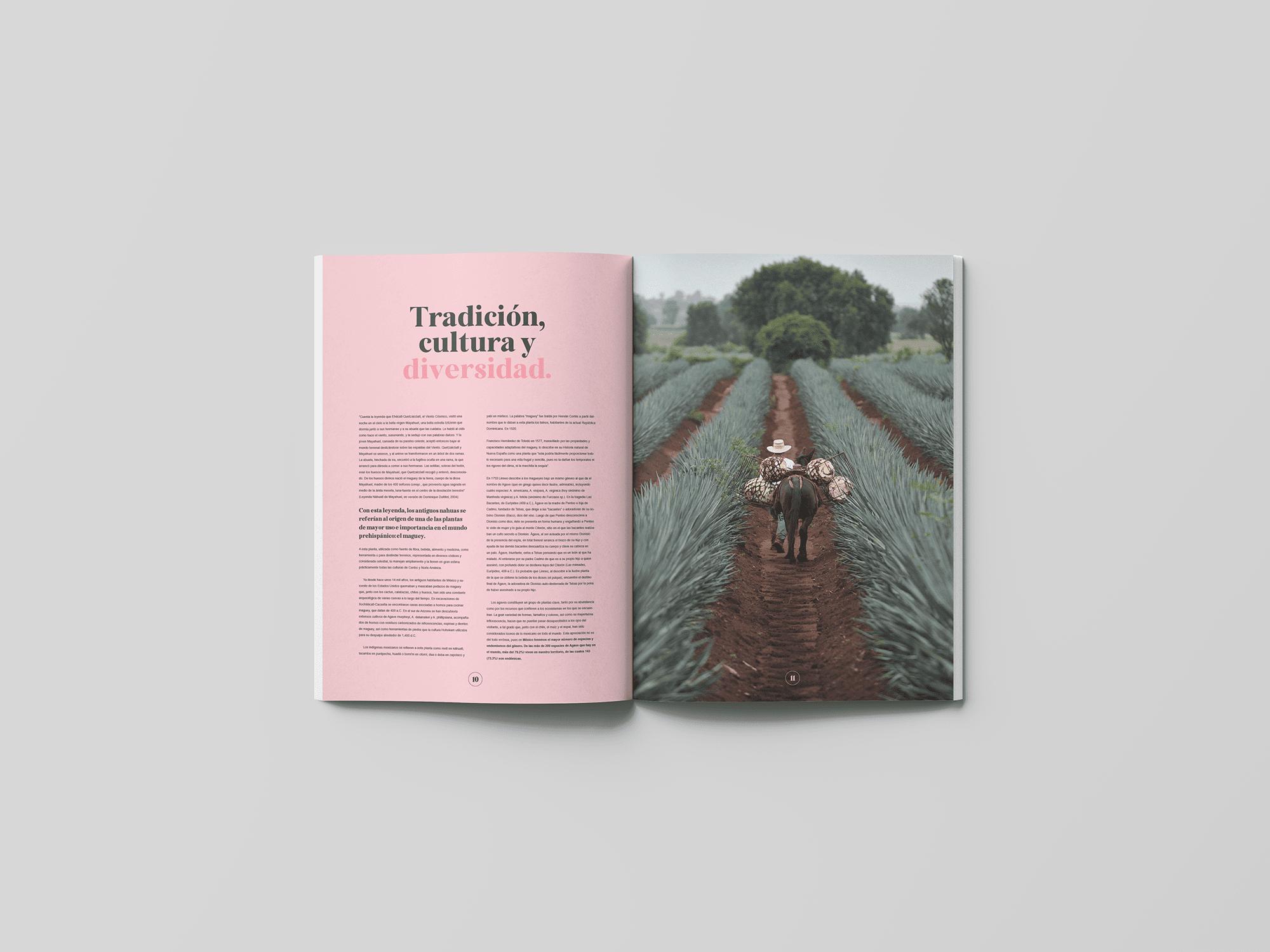 spread-02-book-agave-yoenpaperland (1)