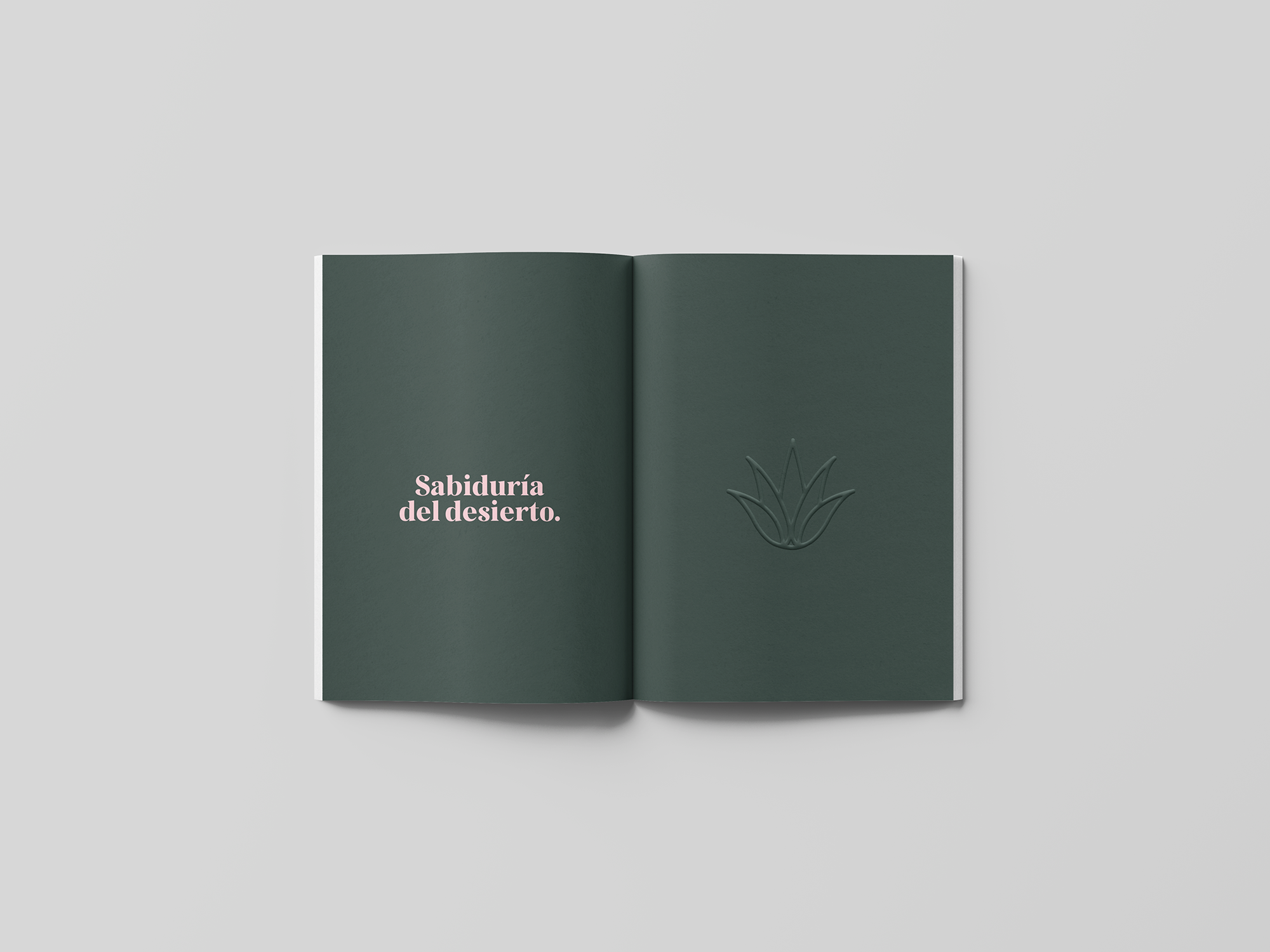 spread-05-book-agave-yoenpaperland