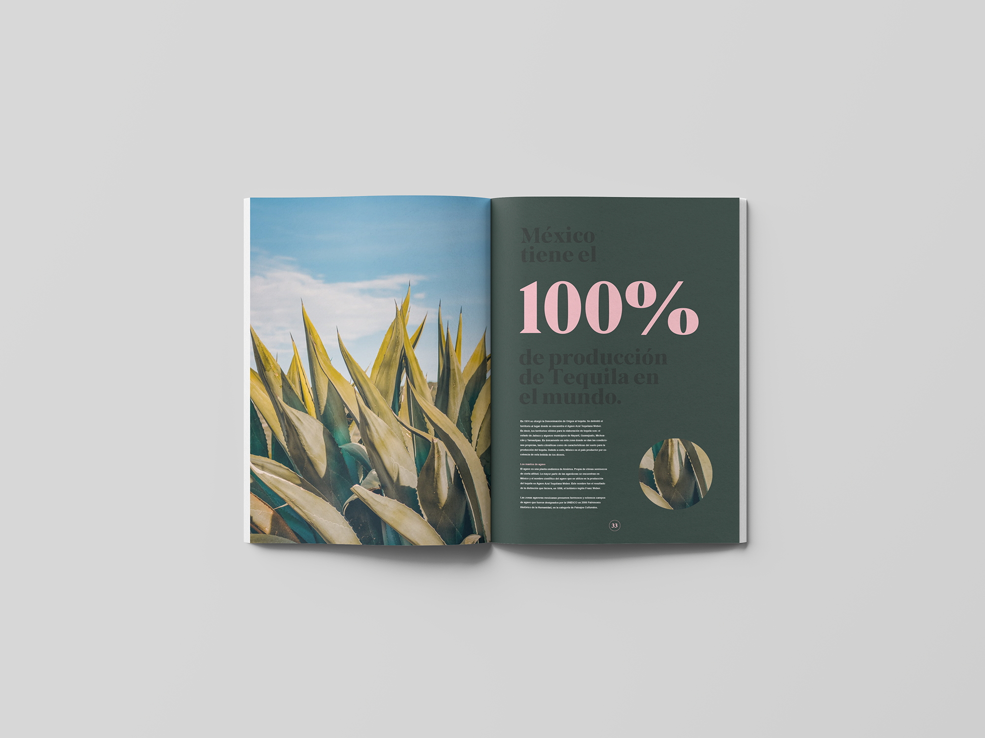 spread-10-book-agave-yoenpaperland