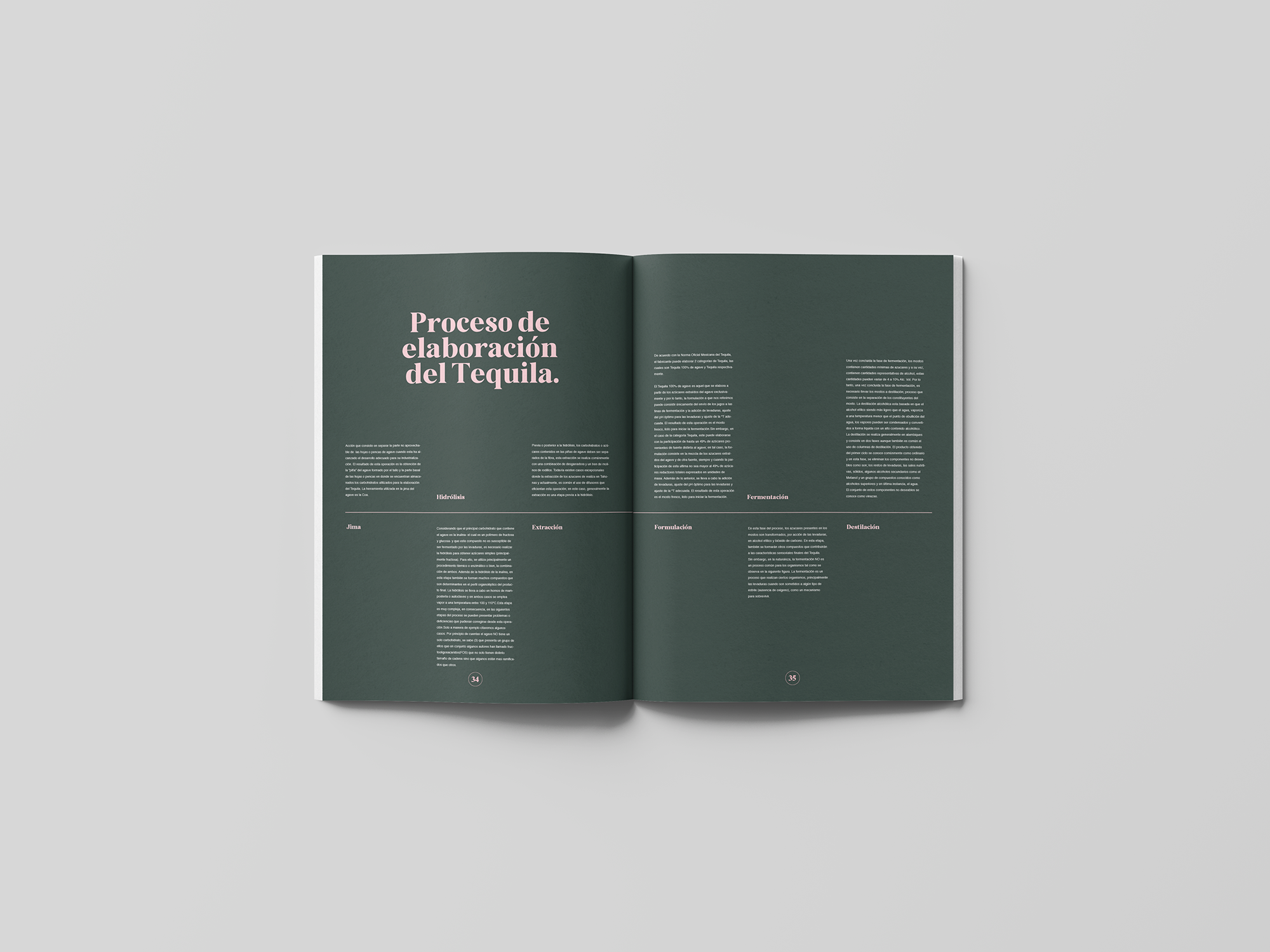 spread-11-book-agave-yoenpaperland