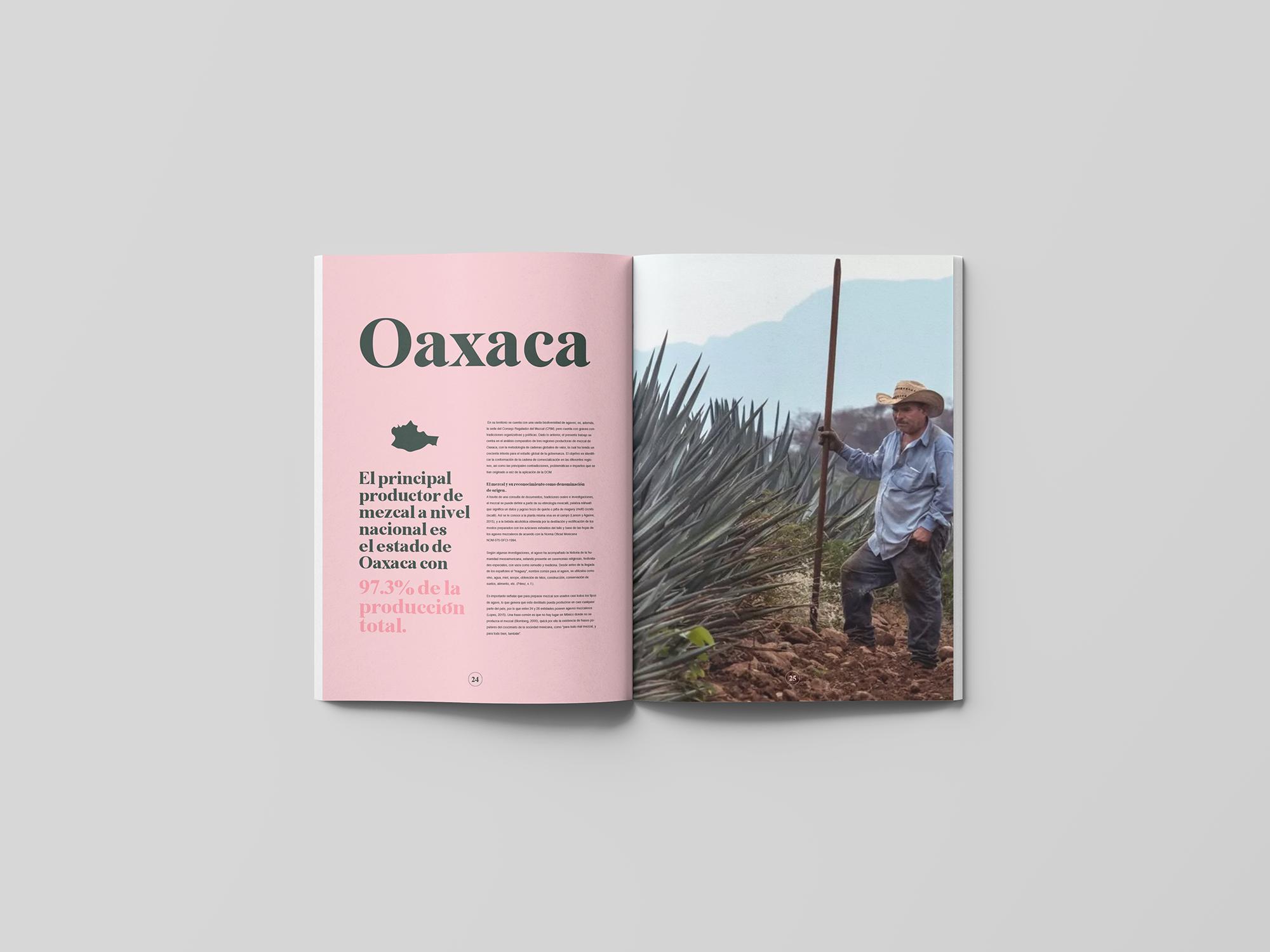 spread-12-book-agave-yoenpaperland