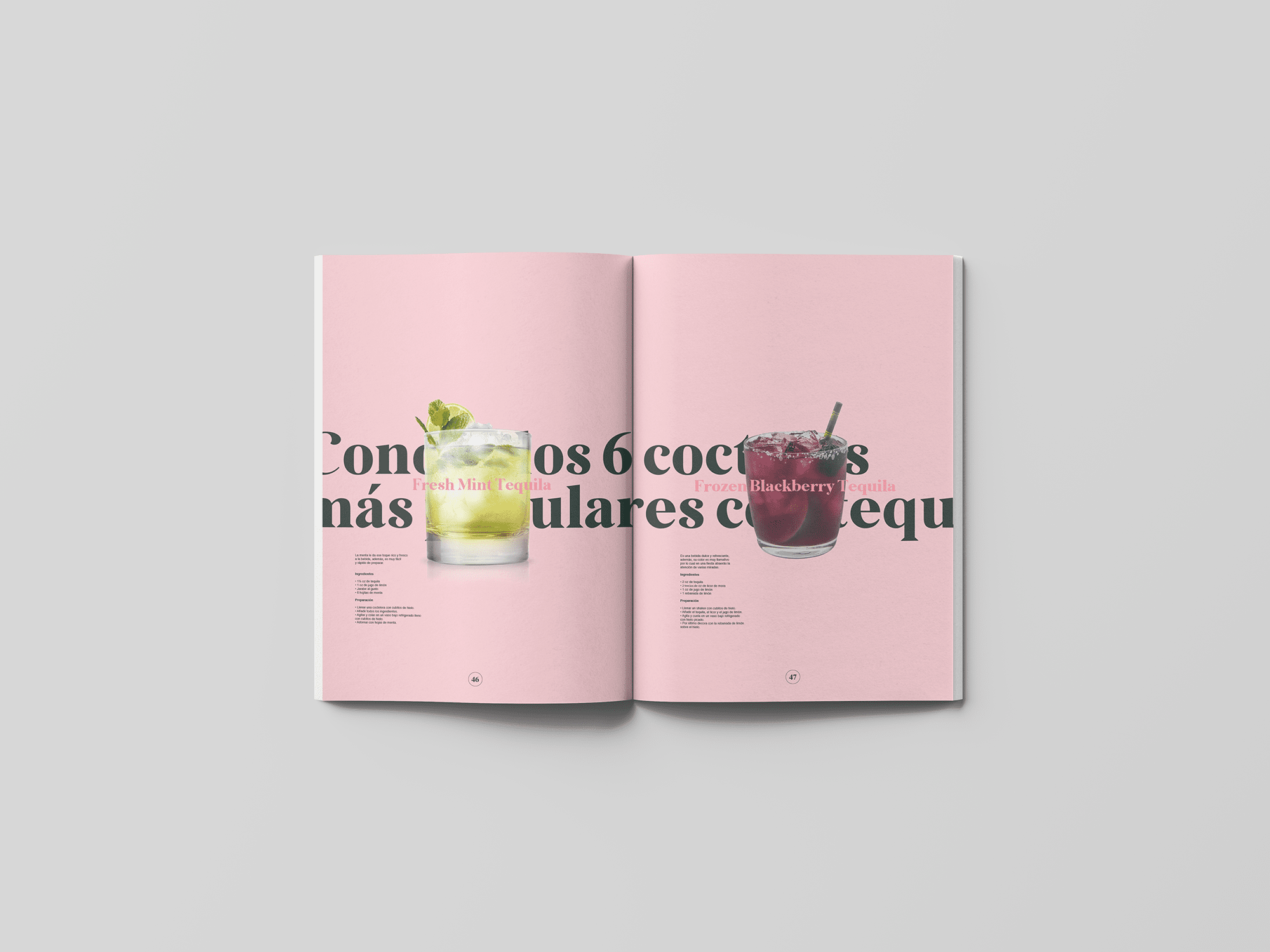 spread-19-book-agave-yoenpaperland