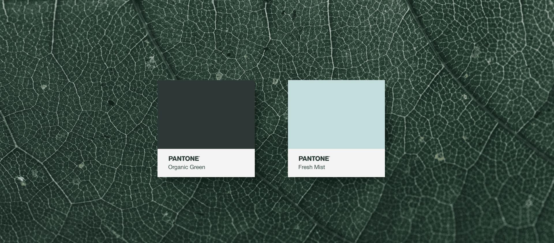 colors-bivir-toothpaste-yoenpaperland